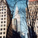 My New York by Charles Mathes